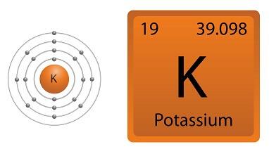 Potassium Facts for Kids