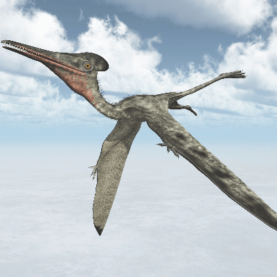 A Picture of Pterodactyl Antiquus