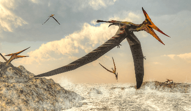 Pterodactyl Facts for Kids