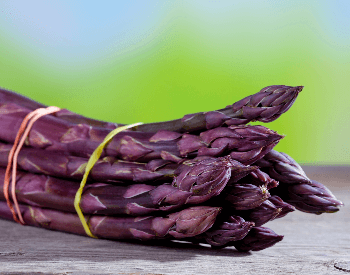 A close-up picture of purple asparagus spears
