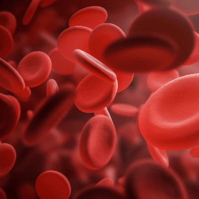 A Picture of Red Blood Cells