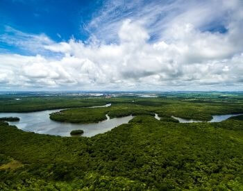 A picture of an ariel view of the Amazon River in Brazil
