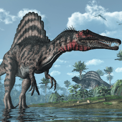 A Picture of a Spinosaurus