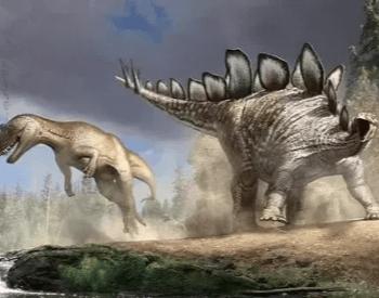 Stegosaurus Fighting An Allosaurus