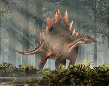 An illustration of the Stegosaurus, which was an Ornithischia dinosaur