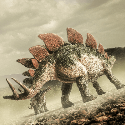 A Picture of a Stegosaurus