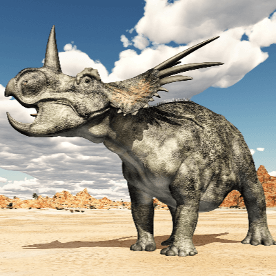 A Picture of Styracosaurus Albertensis