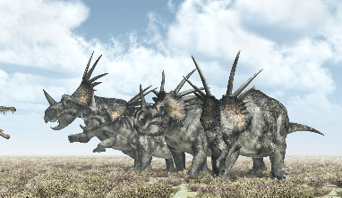 Styracosaurus Facts for Kids