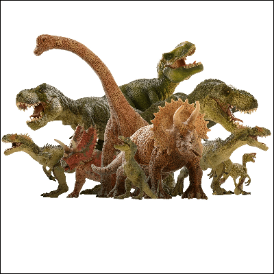 A Picture of Different Types of Dinosaurs