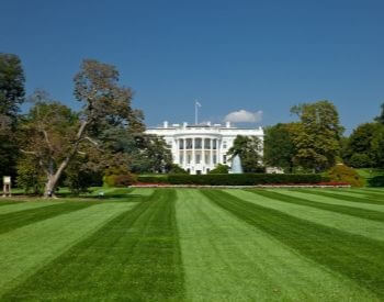 A picture of the big lawn in front of the White House