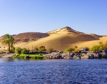 A picture of the shoreline of the Nile River