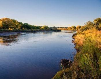 A picture of the shoreline of the Rio Grande River
