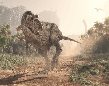 An illustration of the Tyrannosaurus, a Theropoda dinosaur