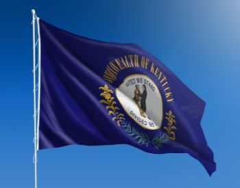 A picture of the U.S. state flag of Kentucky, USA