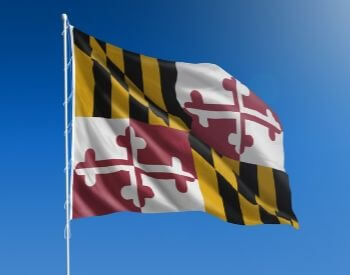A picture of the U.S. state flag of Maryland, USA