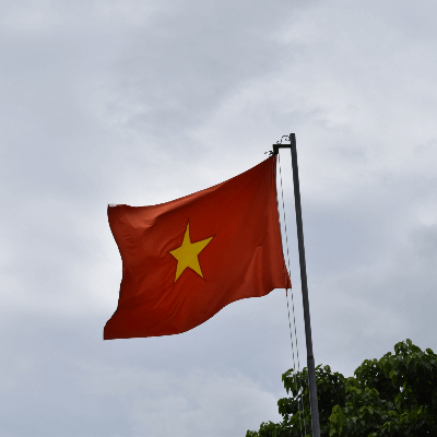 A Picture of Vietnam Flag