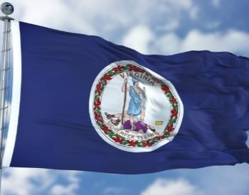 A picture of the flag for the U.S. state of Virginia