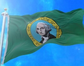 A picture of the flag for the U.S. state of Washington
