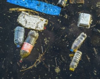 A picture of water polluted with human trash