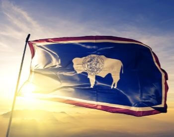 A picture of the flag for the U.S. state of Wyoming
